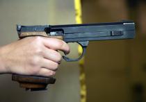 Боялся собак: московский девятиклассник объяснил, зачем принес в школу пистолет